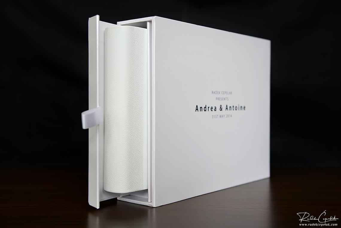 stylish wedding album